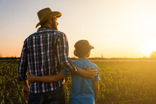 Father and son are standing in their growing wheat field. They are happy because of successful sowing and enjoying sunset.